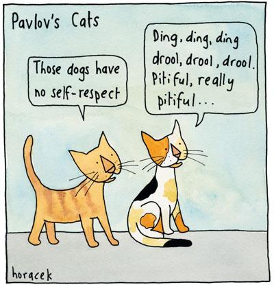 05Horacek-OL02-Pavlovs-Cats-col2400