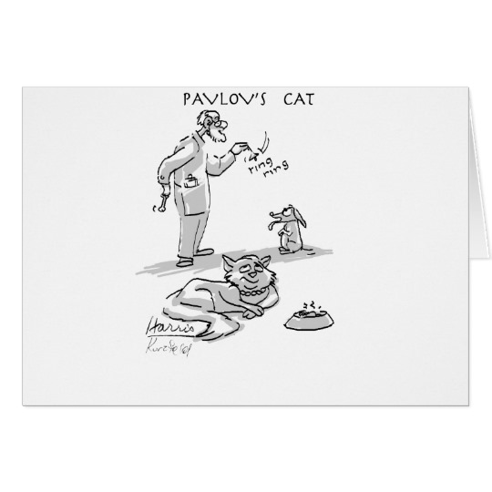 pavlovs_cat_card-r0b31d587f0564e63b9e966be2f31b632_xvuak_8byvr_540